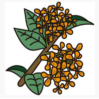 植物 キンモクセイ(黄色)(カラー) – 無料で使えるイラスト素材・PowerPointテンプレート配布サイト【素材工場】