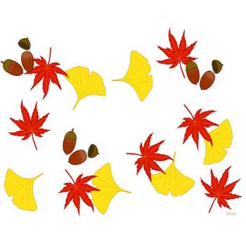 秋イメージのフレームの無料イラスト素材|iiイラストイメージ