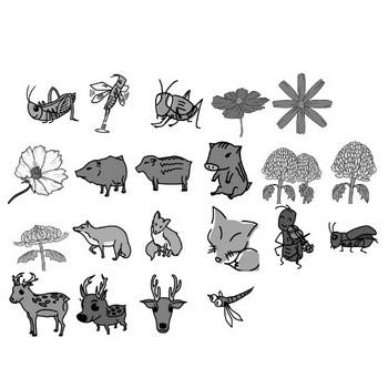 秋のイラスト教材(白黒) | 教育事務の学習指導案・授業案・教材 | EDUPEDIA(エデュペディア) 小学校 学習指導案・授業案・教材
