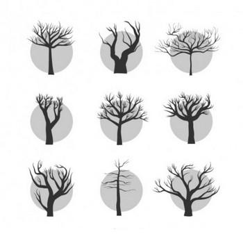樹木の葉のパック ベクター画像 | 無料ダウンロード