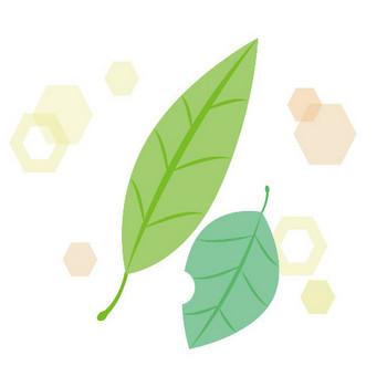 落ち葉 緑 キラキラ イラスト 無料