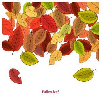 落ち葉(Fallen leaf) - フリーイラスト素材 「趣味で作ったイラストを配るサイト」