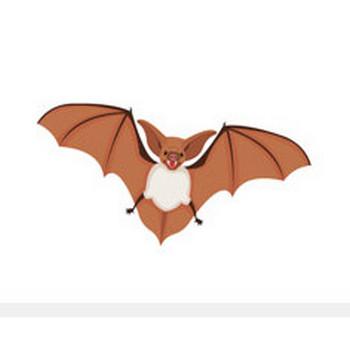 Free Bat Clipart - Clip Art Pictures - Graphics - Illustrations