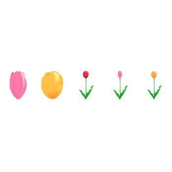 チューリップ14   花、植物イラスト Flode illustration (フロデイラスト)