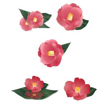 花通信イラスト素材|椿の花