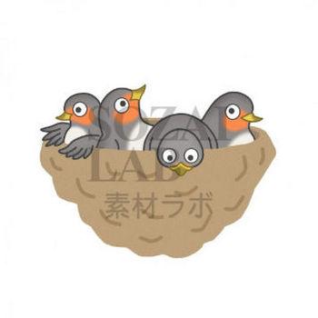 野鳥のイラスト(ツバメ) | 無料イラスト素材|素材ラボ
