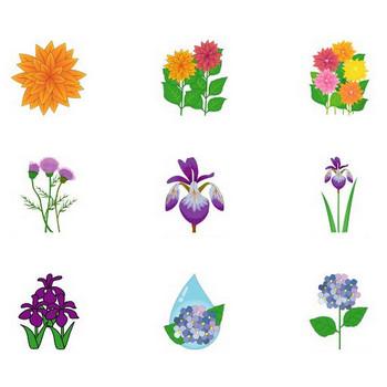イラストポップ | 植物イラスト-初夏の花素材が無料