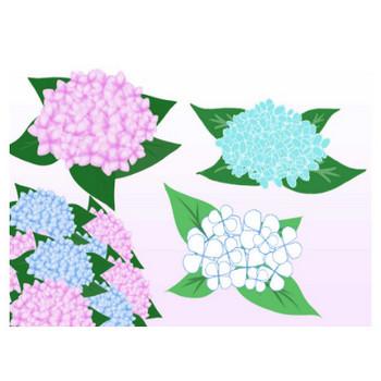 あじさいイラスト - とっても可愛い花の無料素材 - チコデザ