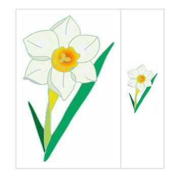 水仙(スイセン)の花の無料イラスト