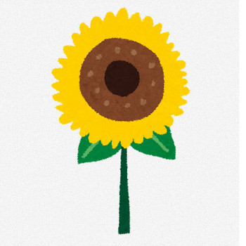 夏のイラスト「向日葵」 | かわいいフリー素材集 いらすとや