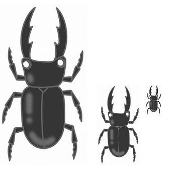 幼稚園児のイラスト・絵カード:くわがたのイラスト・絵カード素材|夏の虫のイラスト