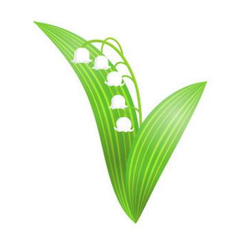 すずらんの無料イラスト2 | 花、植物イラスト Flode illustration (フロデイラスト)
