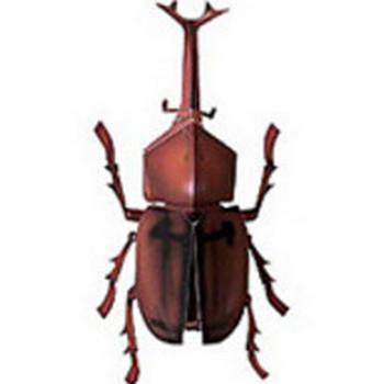 昆虫カブトムシ 無料素材 ダウンロード | ペーパーミュージアム