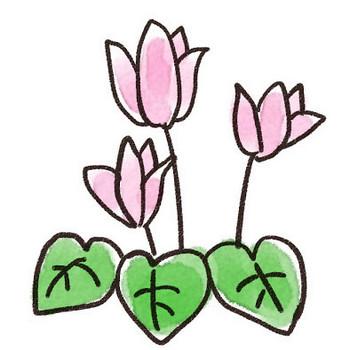 シクラメンのイラスト(花): ゆるかわいい無料イラスト素材集