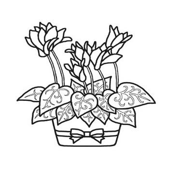 シクラメン(主線・黒)/冬・クリスマスの花/無料塗り絵イラスト【ぬりえプリント】