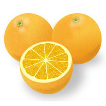 果物-オレンジ-みかんイラスト 画像フリー素材|無料素材倶楽部