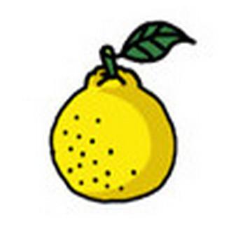 柚子(ゆず) イラスト素材 ( ホームページ ) - フリーのイラスト素材 イラストバンク - Yahoo!ブログ