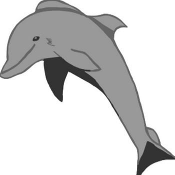 イルカ  イラスト  dolphin   無料