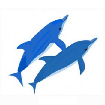 イルカのイラスト素材 | イラスト素材パラダイス 商用利用無料のイラスト素材