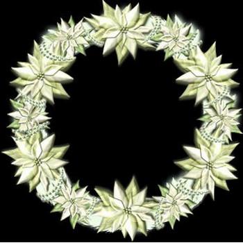 白いポインセチアのクリスマスリース | イラストが無料の【DDばんく】