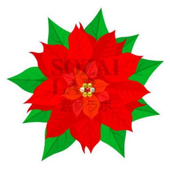クリスマスポインセチア(CSai・png・jpg) | 無料イラスト素材|素材ラボ