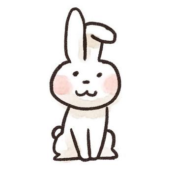 ウサギのイラスト(動物) : ゆるかわいい無料イラスト素材集