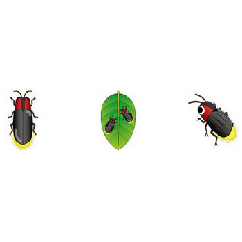 イラストポップ   昆虫-蛍のイラスト無料素材
