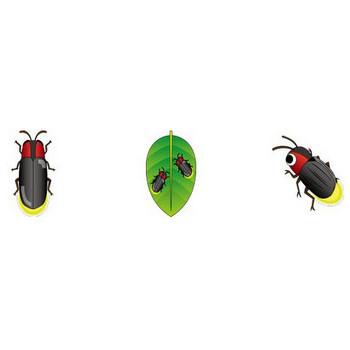 イラストポップ | 昆虫-蛍のイラスト無料素材