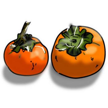印刷素材.net/無料イラスト素材・カット素材「柿」ダウンロード