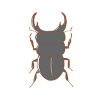 虫のイラスト | かわいいフリー素材が無料のイラストレイン