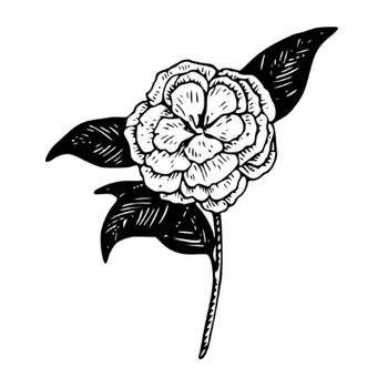 椿の花ベクトル クリップ アート | パブリックドメインのベクトル