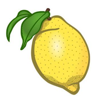 レモン ベクター クリップ アート | パブリックドメインのベクトル