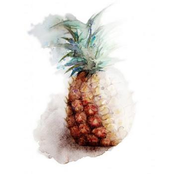 パイナップル | 食べ物 デザート フルーツ 南国 | フリーイラスト素材 コムマール-sozai-