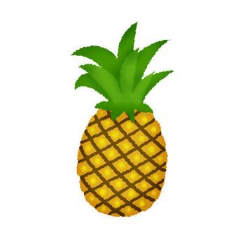 パイナップル | フリーイラスト素材 イラストリウム