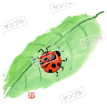 無料素材 てんとう虫のイラスト素材 詳細|楽だねonline 素材ダウンロード