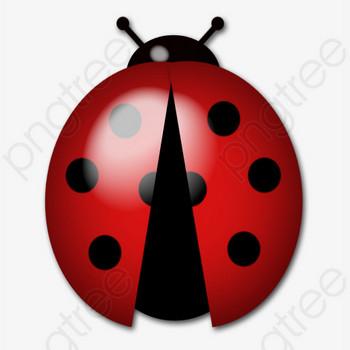 無料ダウンロードのためのてんとう虫 動物 昆虫 てんとう虫 png画像