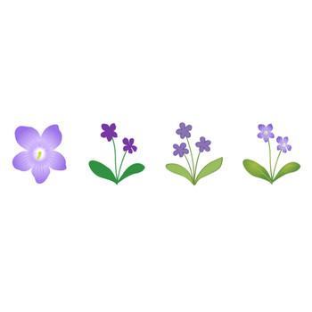 すみれ | 花、植物イラスト Flode illustration (フロデイラスト)