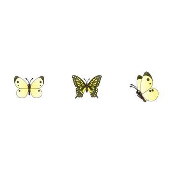 イラストポップ | 昆虫-蝶のイラスト無料素材