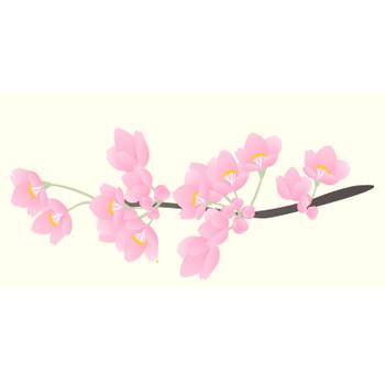 さくら(桜)・その2のイラスト:無料画像の素材屋花子