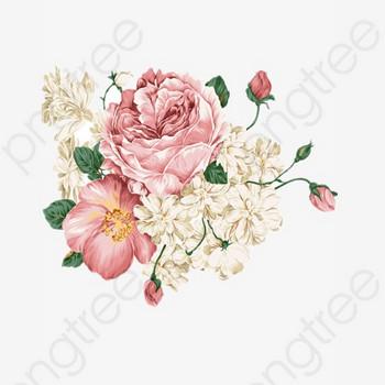 無料ダウンロードのための牡丹 手描き牡丹 牡丹イラスト 国花 png画像