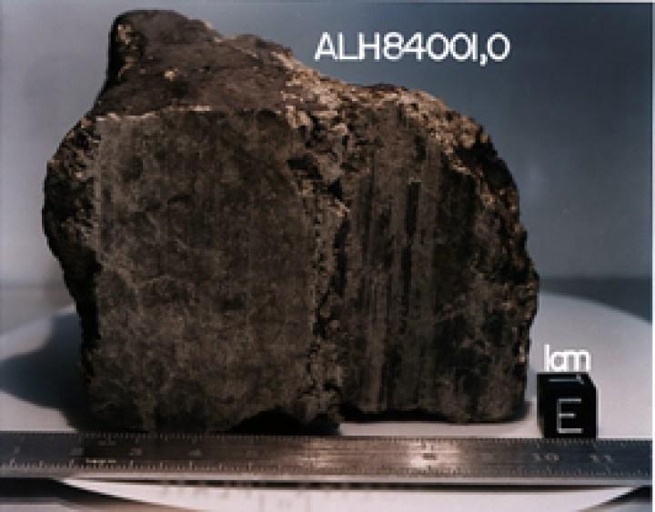 Un meteorite di Marte (ALH940001) scoperto in Antartide nel 1984 è stato studiato dalla NASA per le potenziali prove fossili che la vita primitiva potrebbe essere esistita su Marte più di 3,6 miliardi di anni fa.