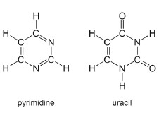 molecular structures of pyrimidine and uracil