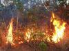 a fire