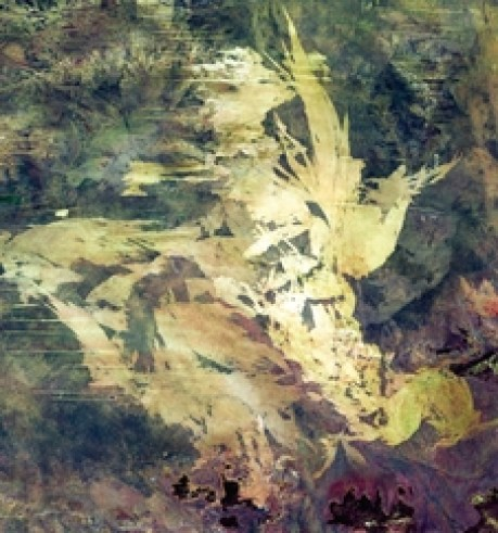 Australia's Great Sandy Desert as seen by Landsat 7 in 2000 shows the only sand dunes in a desert of scrub and rock.