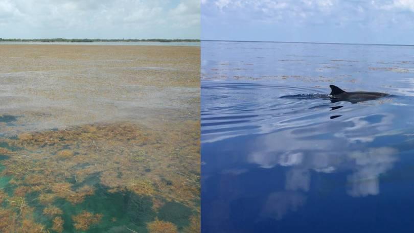sidebyside02 - NASA descobre a maior maré do mundo