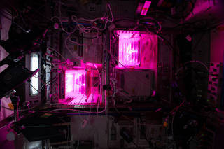 The Veg-PONDS-02 experiment is underway aboard the International Space Station to test an alternative plant growth system.