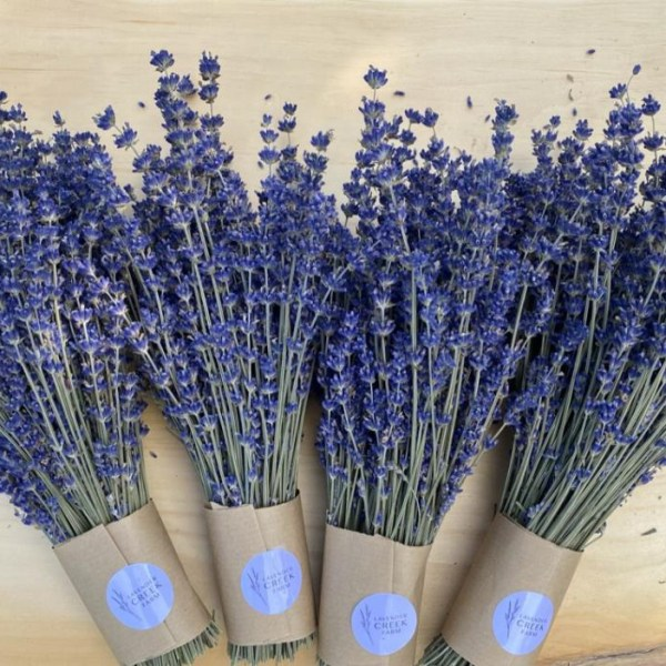 A closeup of 4 dried English Lavender Bundles