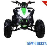 TaoTao ATM50-A1 Scooter – Nashua Sports & Cycle