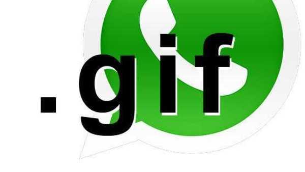WhatsApp Gif Imaging Support