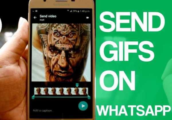 Send GIFs Images On Whatsapp